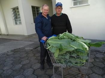 doação alimentos